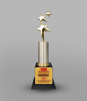 Felication Award by The Economic Times for the contribution in Real Estate Sector in Pune